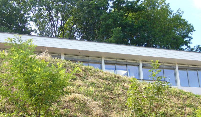 Brulet Stéphane architecture - Maison LAG98 - Baies