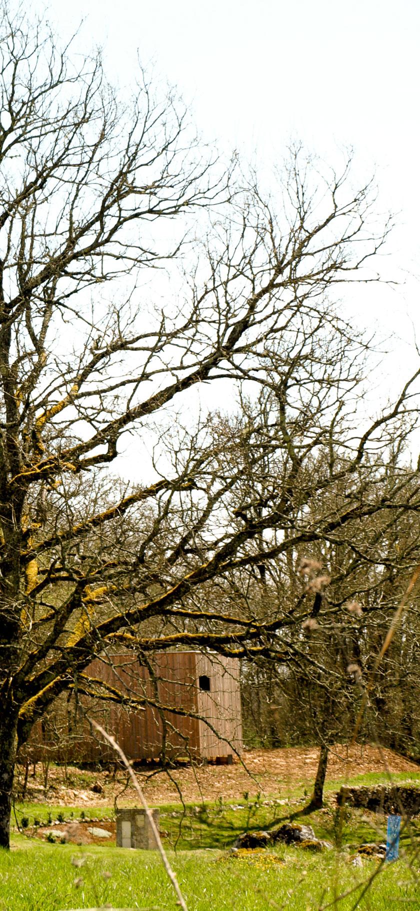 Maison P - Yann Ouvrieux architecte - Cachée dan sles arbres